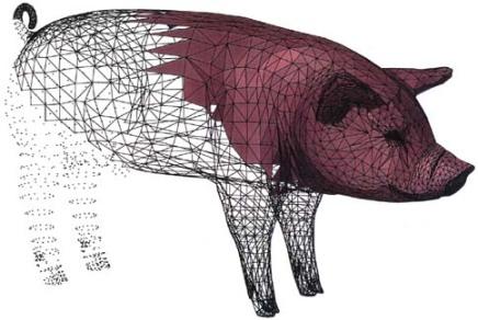 Voronoi pig